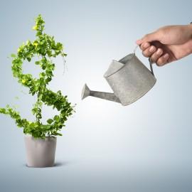 Виды банковских вкладов: как вложить и не потерять